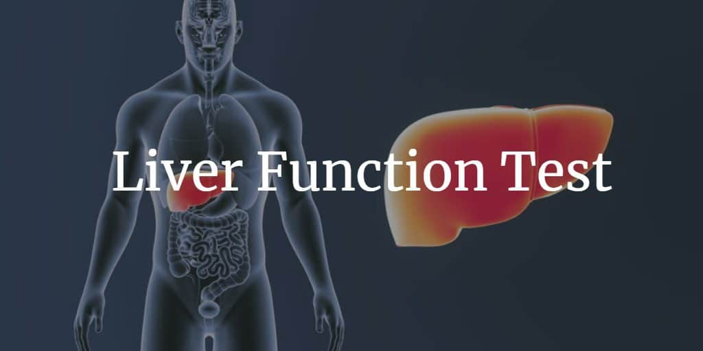 Know more about the liver function test, tests included, procedure, and preparation.