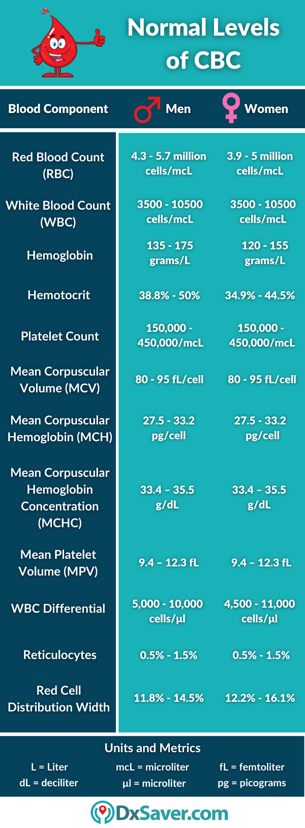 Normal Levels of CBC Blood Test in Men and Women