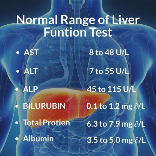 Know more about the normal range liver function tests included in the liver panel.