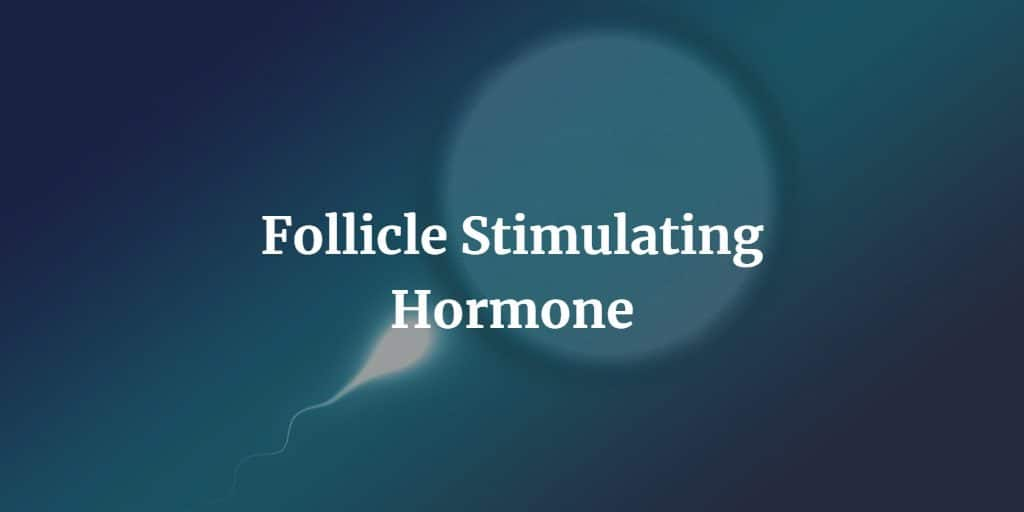 Know more about the follicle-stimulating hormone test including procedure, preparation, and risks.