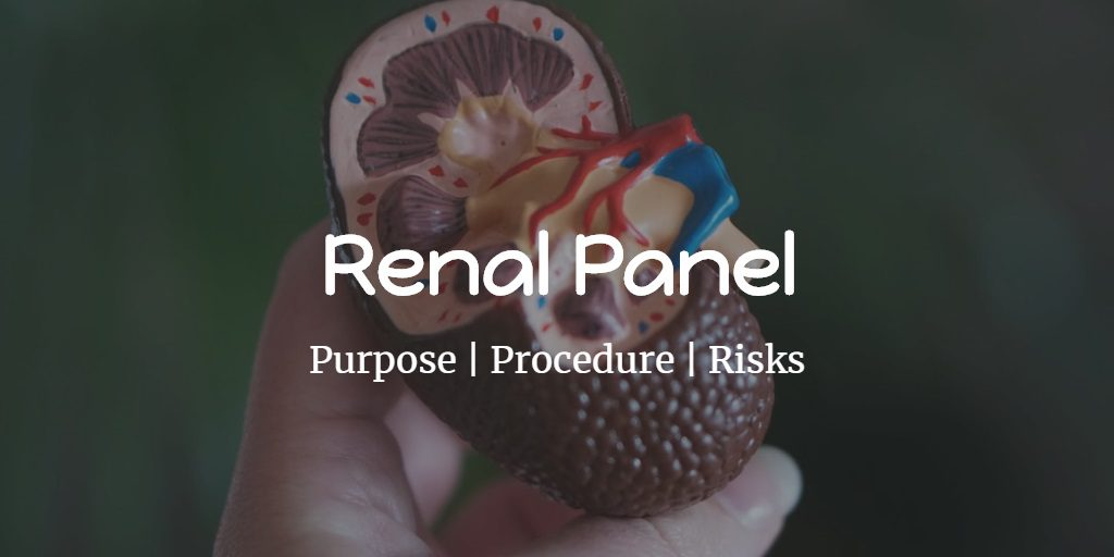 Know more about the renal panel including the cost, tests included, procedure, preparation, and risks.
