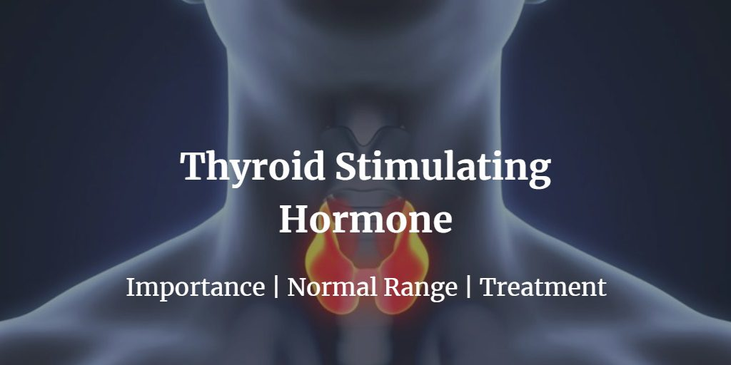 Know more about the thyroid stimulating hormone including the normal levels of TSH.