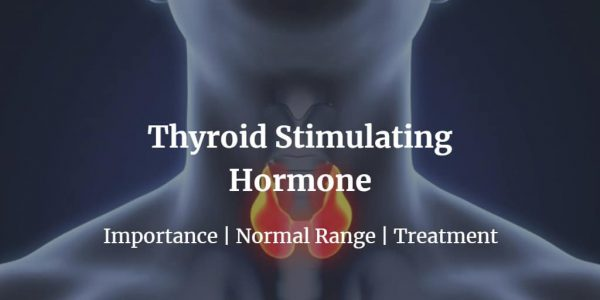 Know more about the TSH test cost, normal TSH levels & hyperthyroidism symptoms in women and men.