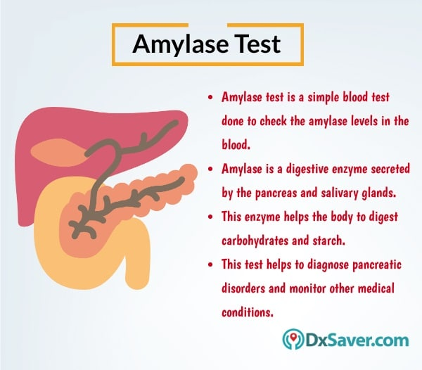 Know more about the amylase blood test and the importance of amylase enzyme in the body.
