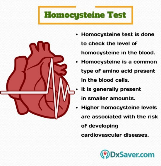Know more about the purpose of homocysteine blood test.