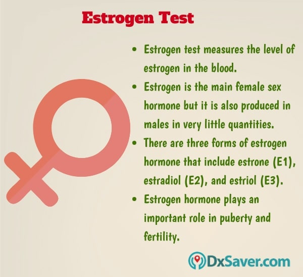 Know more about the importance of estrogen hormone and the estrogen test.