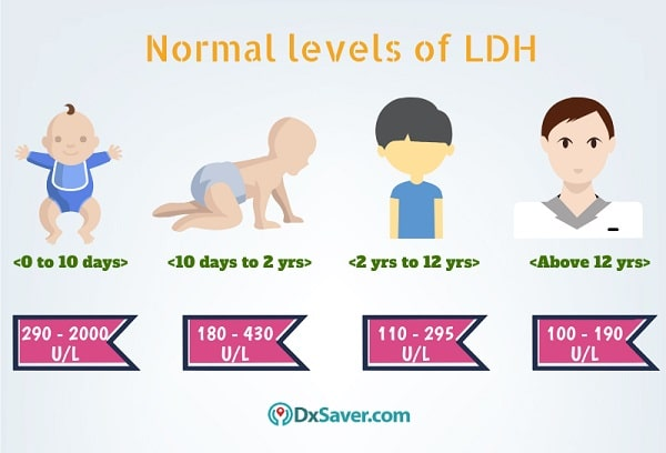 Know more about the normal LDH levels in the blood. Get Lowest LDH Test Cost at $47.