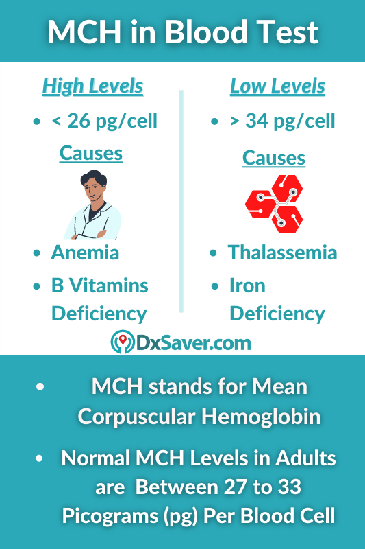 MCH Blood Levels, Normal, High & Low Level Symptoms & Causes