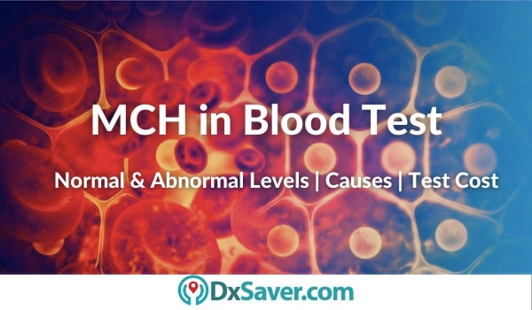 What is MCH in Blood Test?
