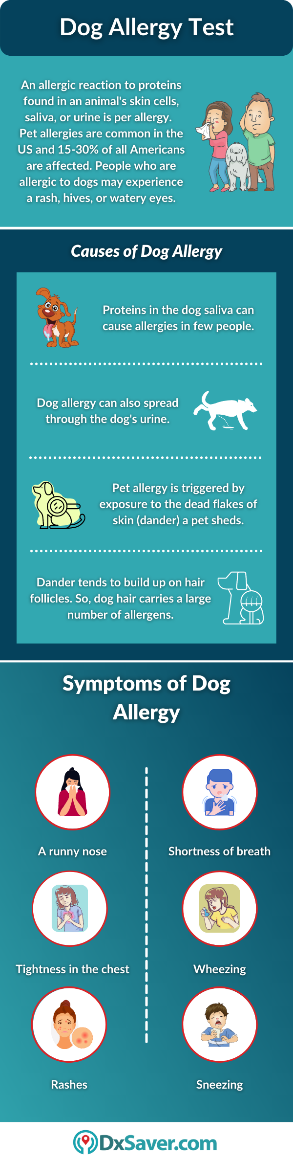 Dog Allergy: Causes and Symptoms
