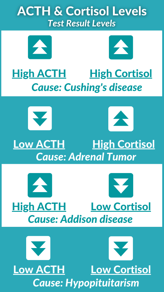 ACTH & Cortisol Test Result Levels