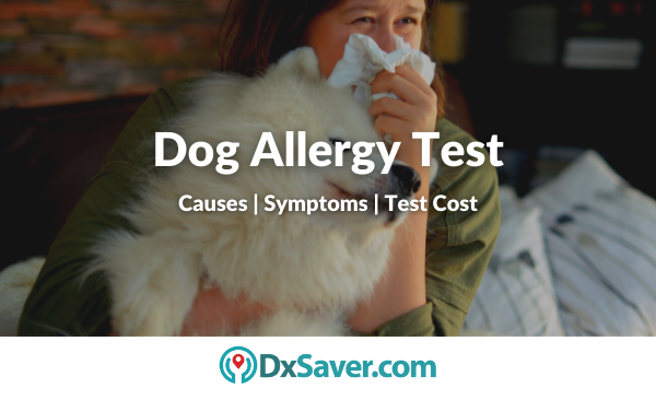 Dog Allergy Test