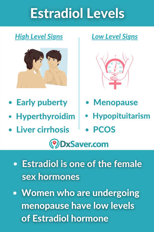 High and Low Levels of Estradiol Hormone - Causes, Symptoms and Test Cost